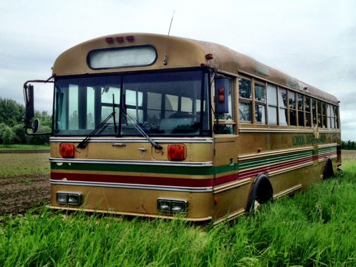 Golden-Bus-in-a-field