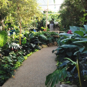 Botanical Gardens that Reclaim Guelph's Wastewater
