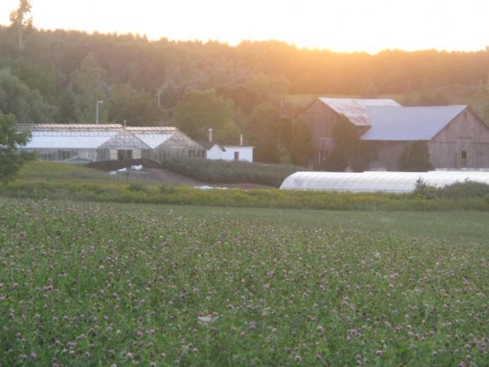 farm-from-hay